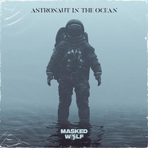 Astronaut In The Ocean -