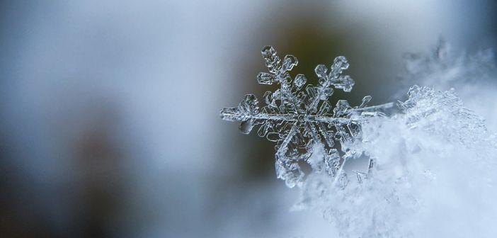 pahulja snijega