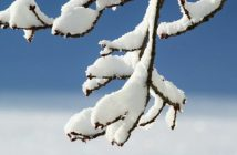 zima, snijeg