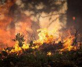 Lokaliziran požar na Korčuli