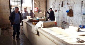 peskarija ribarnica Dubrovnik