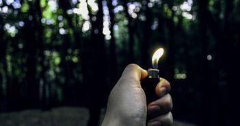 upaljač, piroman, požar, šuma