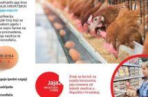 sigurnost hrane tijekom blagdana