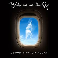 Wake Up In The Sky -