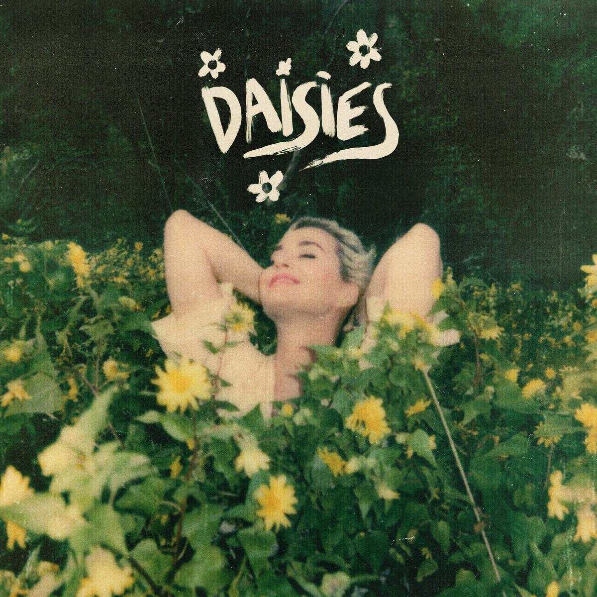 Dasies -